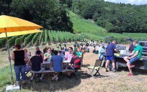 Weinprobe Tour de Wein Ruedesheim